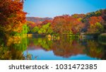 Leaf Color Change With Lake Of...