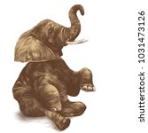 elephant sitting with raised... | Shutterstock .eps vector #1031473126