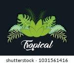 trendy summer tropical leaves...   Shutterstock .eps vector #1031561416