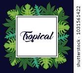 trendy summer tropical leaves...   Shutterstock .eps vector #1031561422