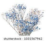 twig with colored blue flowers... | Shutterstock . vector #1031567962