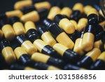 pills in capsules | Shutterstock . vector #1031586856