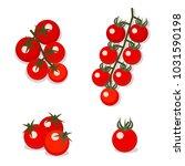 vector illustration of cherry... | Shutterstock .eps vector #1031590198