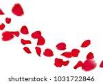 Stock photo red sakura or rose falling petals 1031722846