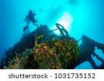 scuba diver dsilhouette iving... | Shutterstock . vector #1031735152