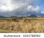 hawaiian landscapes  kauai ...   Shutterstock . vector #1031788582