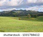 hawaiian landscapes  kauai ...   Shutterstock . vector #1031788612