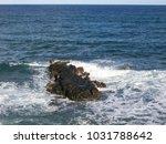 hawaiian landscapes  kauai ...   Shutterstock . vector #1031788642
