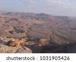 a capra watching the ramon... | Shutterstock . vector #1031905426