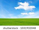 Meadow And Beautiful Sky