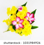 Stock photo pink flower bouquet and yellow flowers isolated on a white background 1031984926