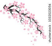 cherry blossom or sakura ... | Shutterstock .eps vector #1032023056