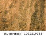 brown beige wet texture | Shutterstock . vector #1032219355