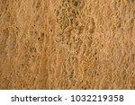 brown beige wet texture | Shutterstock . vector #1032219358