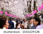 tourist walking through cherry... | Shutterstock . vector #1032229138