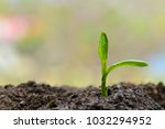 preserve nature  go green | Shutterstock . vector #1032294952