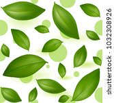 green young tea leaves on a... | Shutterstock .eps vector #1032308926