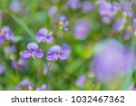 abstract soft blurred and soft... | Shutterstock . vector #1032467362