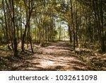 landscape natural walking trail ... | Shutterstock . vector #1032611098