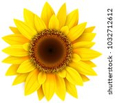 sunflower flower isolated ... | Shutterstock .eps vector #1032712612