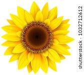 sunflower flower isolated ... | Shutterstock .eps vector #1032712612