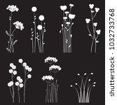 blooming wild flowers separated ... | Shutterstock . vector #1032733768