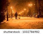 Walking Dog In Winter Evening...
