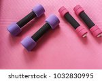 small pink and big violet... | Shutterstock . vector #1032830995
