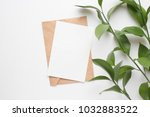 mockup card with plants.... | Shutterstock . vector #1032883522