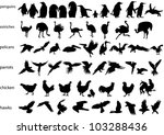 Vector Silhouettes Of Penguins...
