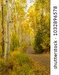 dirt road leading through a... | Shutterstock . vector #1032896578