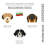 dogs by country of origin.... | Shutterstock .eps vector #1032920182