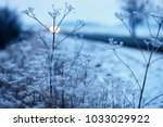 early winter  cold misty... | Shutterstock . vector #1033029922