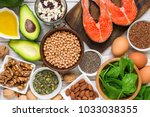 food rich in omega 3 fatty acid ... | Shutterstock . vector #1033038355