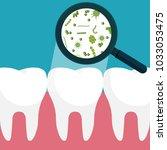 vector illustration. bacteria... | Shutterstock .eps vector #1033053475