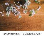 branch of blossom on wooden... | Shutterstock . vector #1033063726
