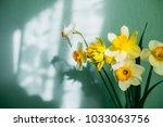 yellow flowers in a vase | Shutterstock . vector #1033063756