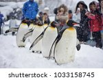 snowy penguins parade show in... | Shutterstock . vector #1033158745