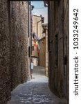 old wooden garage door in... | Shutterstock . vector #1033249642