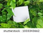 nature mock up   Shutterstock . vector #1033343662