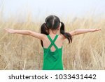 asian child girl with... | Shutterstock . vector #1033431442