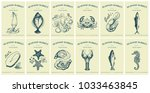 labels with seafood and fishes. ... | Shutterstock .eps vector #1033463845
