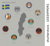 dogs by country of origin.... | Shutterstock .eps vector #1033499092