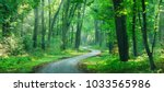 winding gravel road through... | Shutterstock . vector #1033565986