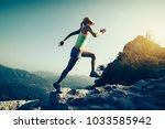 young fitness woman trail... | Shutterstock . vector #1033585942