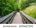 Empty Narrow Wooden Boardwalk...