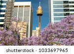 Sydney   October 2015  Sydney...