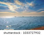 beautiful sea and sky  on... | Shutterstock . vector #1033727932