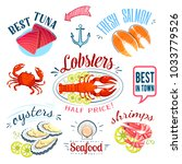 set of colorful cartoon seafood ... | Shutterstock . vector #1033779526