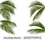 different in form tropical dark ... | Shutterstock .eps vector #1033795942